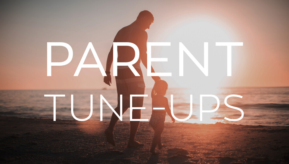 Parent Tune Up - Temperment Types