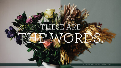 These Are The Words