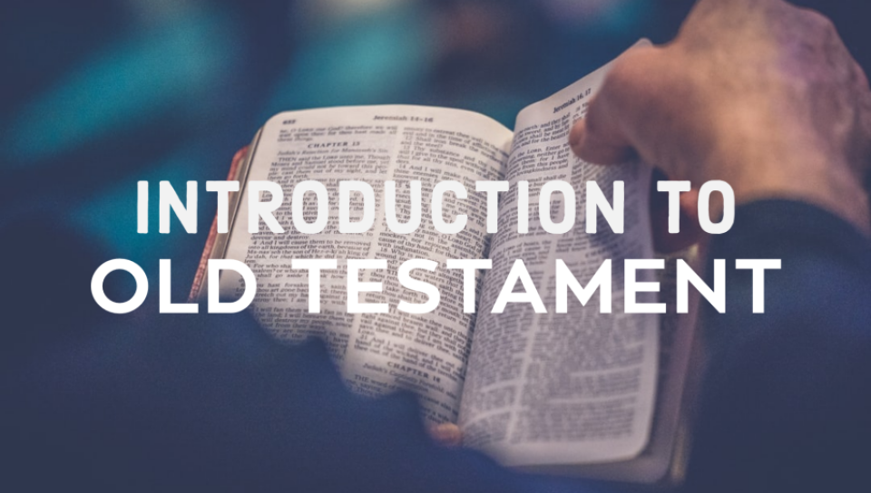 Intro To Old Testament Zoom Study